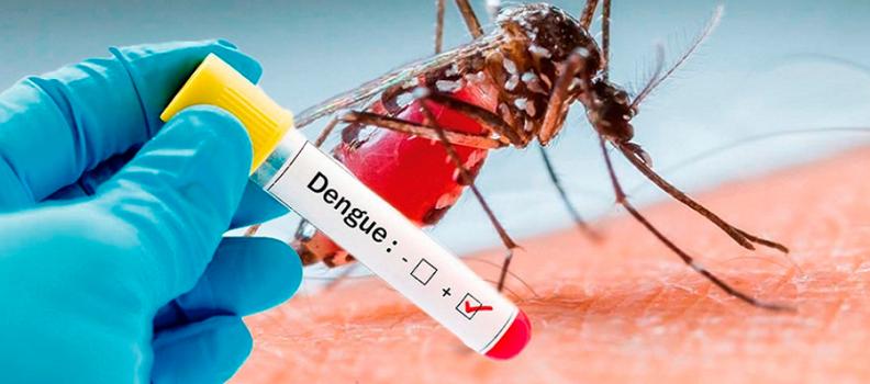 Concentra Ciudad Acuña 65 por ciento de casos de dengue, 3 son hemorrágicos.