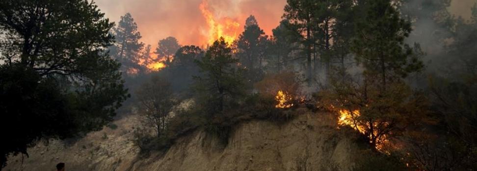 Fuego consume viviendas, deja mil afectados