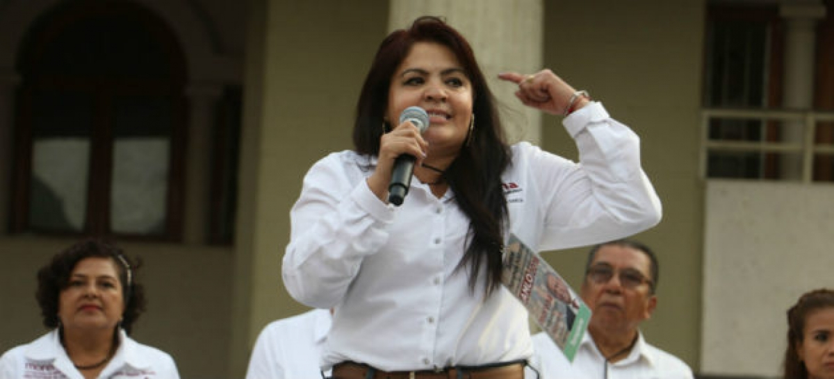 Mayer, Fernández Noroña y Nestora llegarían al Congreso; también Osorio y Mancera