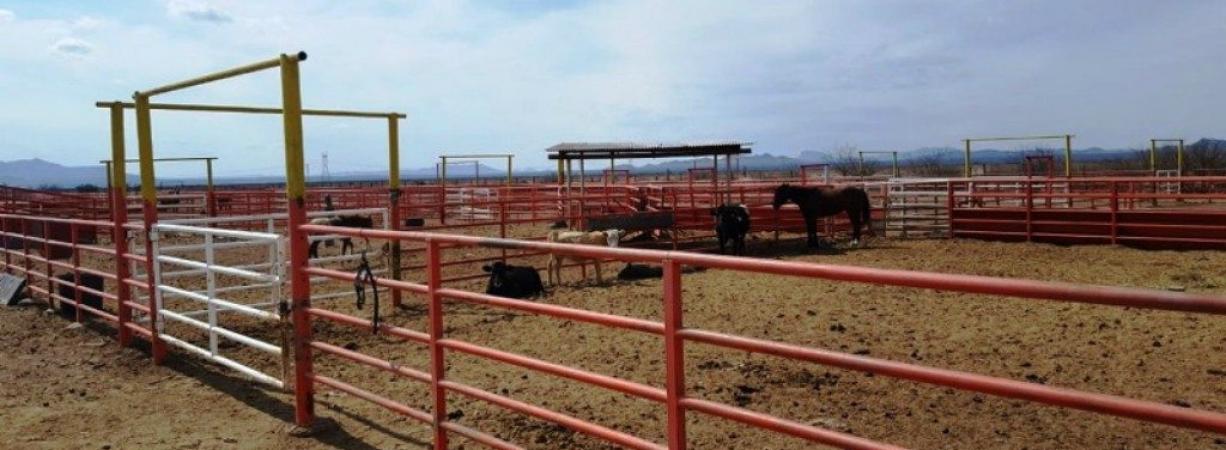 Asegura Fiscalía de Chihuahua rancho de 30 mil hectáreas de César Duarte