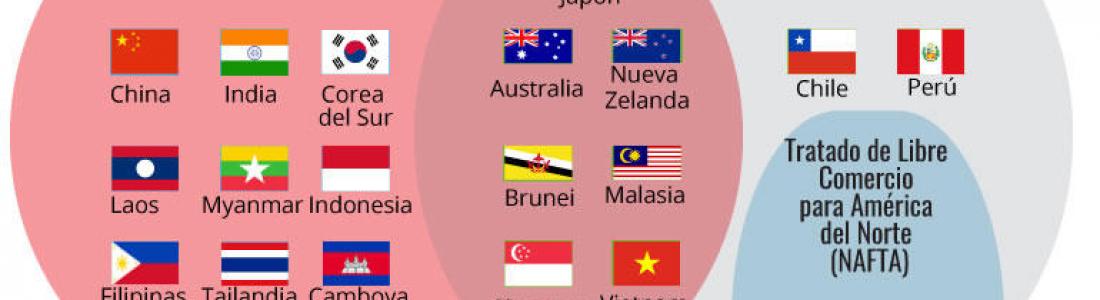8 DATOS PARA CONOCER AL SUSTITUTO DEL TPP