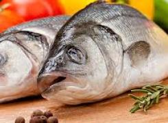 Importación de pescado al Estado de Texas ¡EVITE MULTAS!