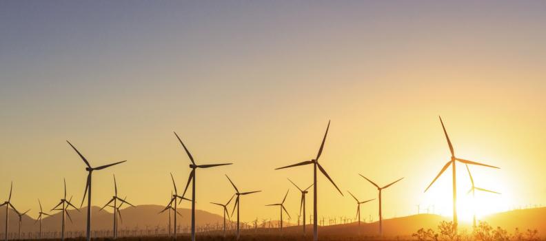 Iniciará TecnoMont construcción de parque eólico.