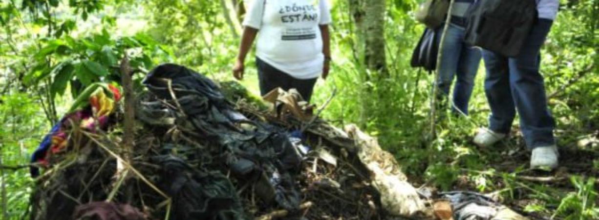 253 cuerpos hallados en fosas clandestinas de Veracruz: colectivo 'El Solecito'