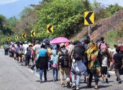 Migrantes usan documentos falsificados